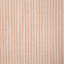Cameo Stripe Drapery and Upholstery Fabric by Pindler