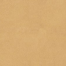 Chamois Drapery and Upholstery Fabric by Scalamandre