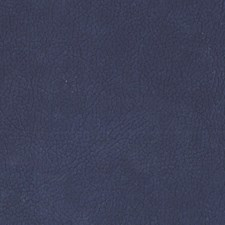 Ultramarine Drapery and Upholstery Fabric by Scalamandre