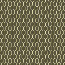Black/Yellow/Gold Traditional Drapery and Upholstery Fabric by JF