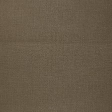 Burlwood Drapery and Upholstery Fabric by RM Coco
