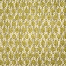 Olive Contemporary Drapery and Upholstery Fabric by Pindler