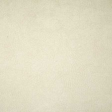 Alpaca Solid Drapery and Upholstery Fabric by Pindler