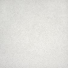 Salt Drapery and Upholstery Fabric by Silver State