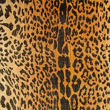 Black On Gold Drapery and Upholstery Fabric by Scalamandre