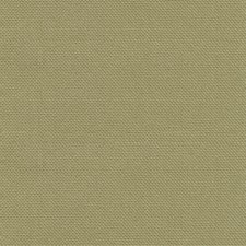 Desert Green Drapery and Upholstery Fabric by Kasmir