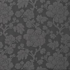 Coal Dust Drapery and Upholstery Fabric by Kasmir