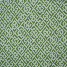 Green/Offwhite/White Traditional Drapery and Upholstery Fabric by JF