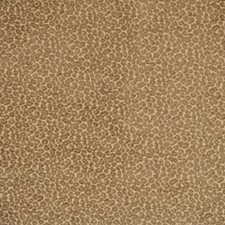 Safari Drapery and Upholstery Fabric by Silver State
