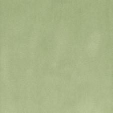 Mint Drapery and Upholstery Fabric by Silver State