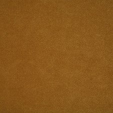 Honey Solid Drapery and Upholstery Fabric by Pindler