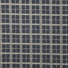 Marina Check Drapery and Upholstery Fabric by Pindler