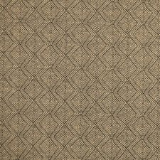 Ebony Drapery and Upholstery Fabric by Silver State