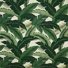 Tropic Traditional Drapery and Upholstery Fabric by Pindler