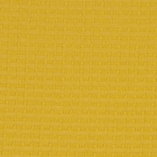 Primrose Drapery and Upholstery Fabric by Robert Allen