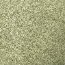 Peridot Metallic Drapery and Upholstery Fabric by Kravet