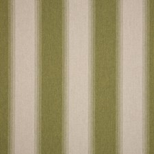 Olive Drapery and Upholstery Fabric by Silver State