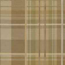 Grassland Drapery and Upholstery Fabric by Kasmir