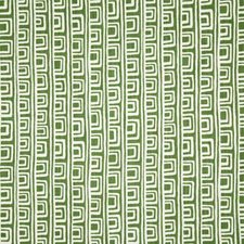 Palm Contemporary Drapery and Upholstery Fabric by Pindler