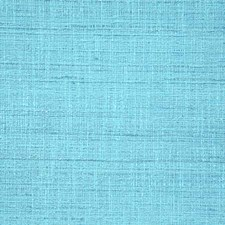 Caribe Solid Drapery and Upholstery Fabric by Pindler