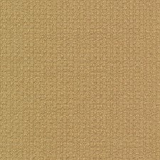 Taffy Drapery and Upholstery Fabric by Kasmir