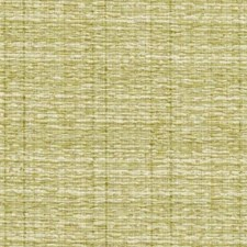 Caper Drapery and Upholstery Fabric by RM Coco