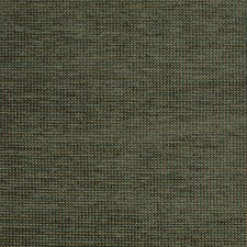 Forest/Black Drapery and Upholstery Fabric by Scalamandre