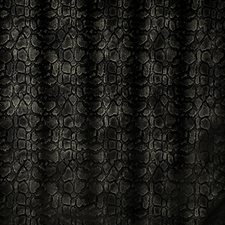 Noir Drapery and Upholstery Fabric by Pindler