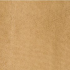 Praline Skins Drapery and Upholstery Fabric by Kravet