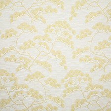 Limoncello Contemporary Drapery and Upholstery Fabric by Pindler