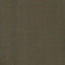 Sepia Drapery and Upholstery Fabric by Kasmir