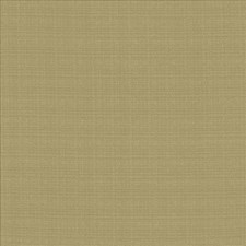 Julep Drapery and Upholstery Fabric by Kasmir