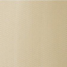 Gold Dust Metallic Drapery and Upholstery Fabric by Kravet