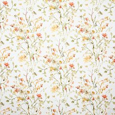 Tuscan Contemporary Drapery and Upholstery Fabric by Pindler