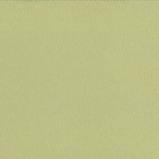 Lemon Grass Drapery and Upholstery Fabric by Kasmir