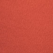 Fire Drapery and Upholstery Fabric by Silver State