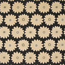 Black Diamond Drapery and Upholstery Fabric by Kasmir