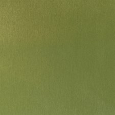 Grass Drapery and Upholstery Fabric by Silver State