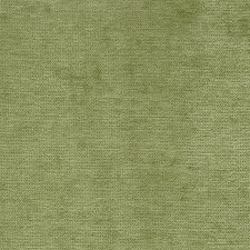 Cactus Solid Drapery and Upholstery Fabric by Pindler