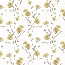 Chamomile Drapery and Upholstery Fabric by Kasmir