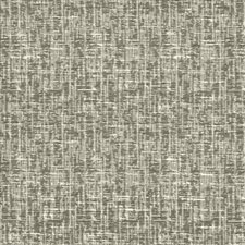 Stone Drapery and Upholstery Fabric by Kasmir