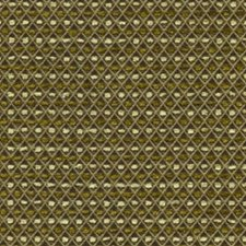 Thicket Drapery and Upholstery Fabric by RM Coco