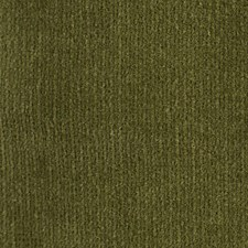 Avocado Drapery and Upholstery Fabric by Scalamandre