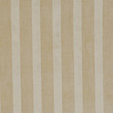 Tusk Drapery and Upholstery Fabric by RM Coco