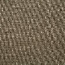 Earth Solid Drapery and Upholstery Fabric by Pindler