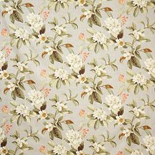 Shadow Traditional Drapery and Upholstery Fabric by Pindler