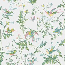 Green/Pink Wallcovering by Cole & Son Wallpaper
