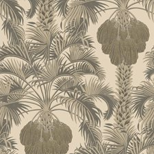 Silver/Charcoal Botanical Wallcovering by Cole & Son Wallpaper