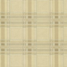 Olive Plaid Wallcovering by Brewster