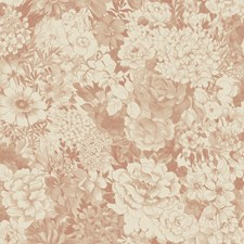 Peach Floral and Flower Wallcovering by Brewster